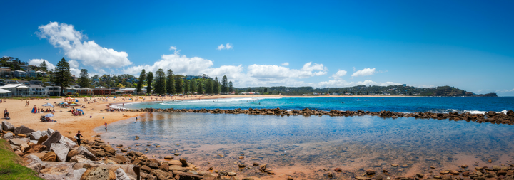 Avoca Beach Panorama, Central Coast, Australia, Sea view with people on the white sandy beach. Background is some beach houses and trees.